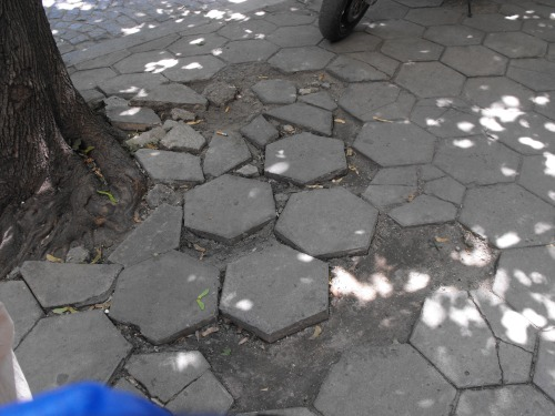 Typical Sofia sidewalk. Pretty tough to push a baby buggy on one of these!